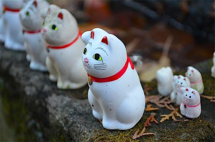 Gotokuji, Tokyo's lucky cat shrine with manekineko statues