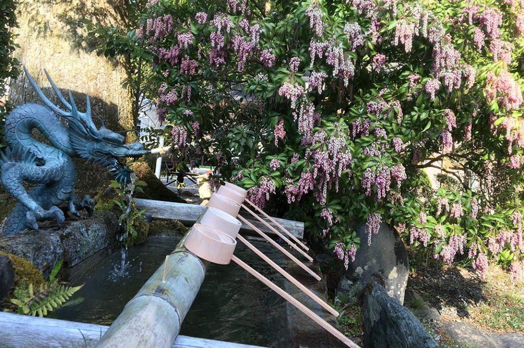 japan-wakayama-kumanokodo-pilgrimage-trail-walk-nakahechi-day3-tsugizakura-hongu-taisha