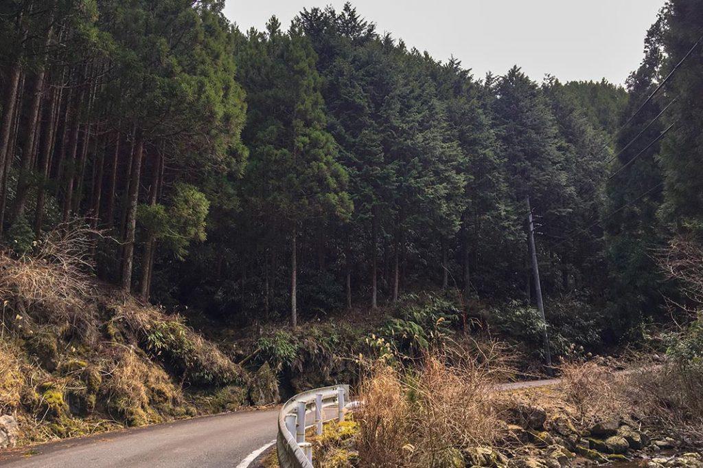 japan-wakayama-kumanokodo-pilgrimage-trail-walk-nakahechi-day5-koguchi-nachi- Ogumotori-goe
