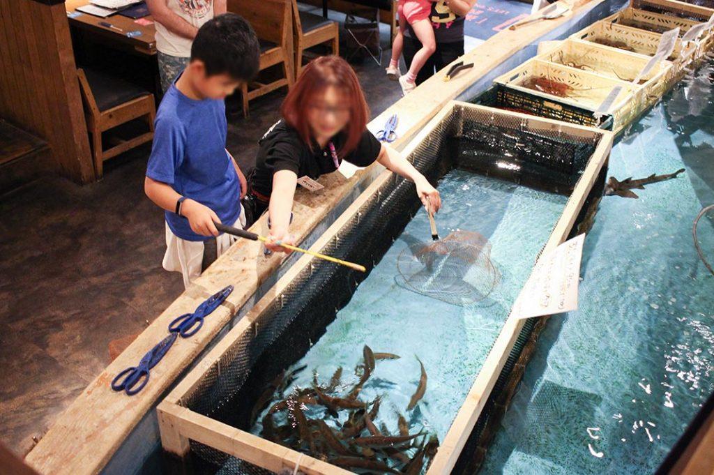zauo fishing restaurant tokyo fishing restaurant unique dining experience tokyo kid-friendly