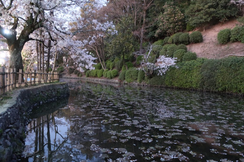 This Nearby Park is the Original Site of Dogo Onsen.