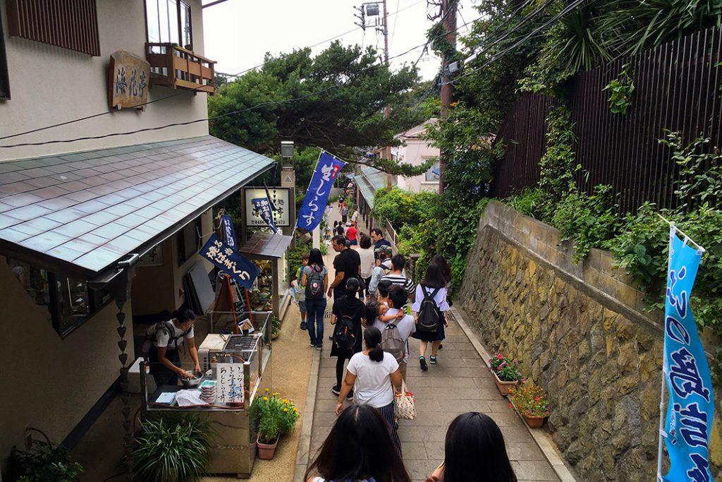 Shirasudon is available at many local restaurants