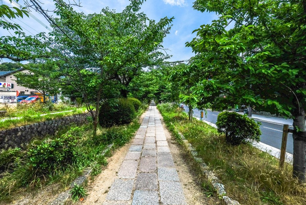 Philosopher's Path in Kyoto on the way to Silver Pavilion.