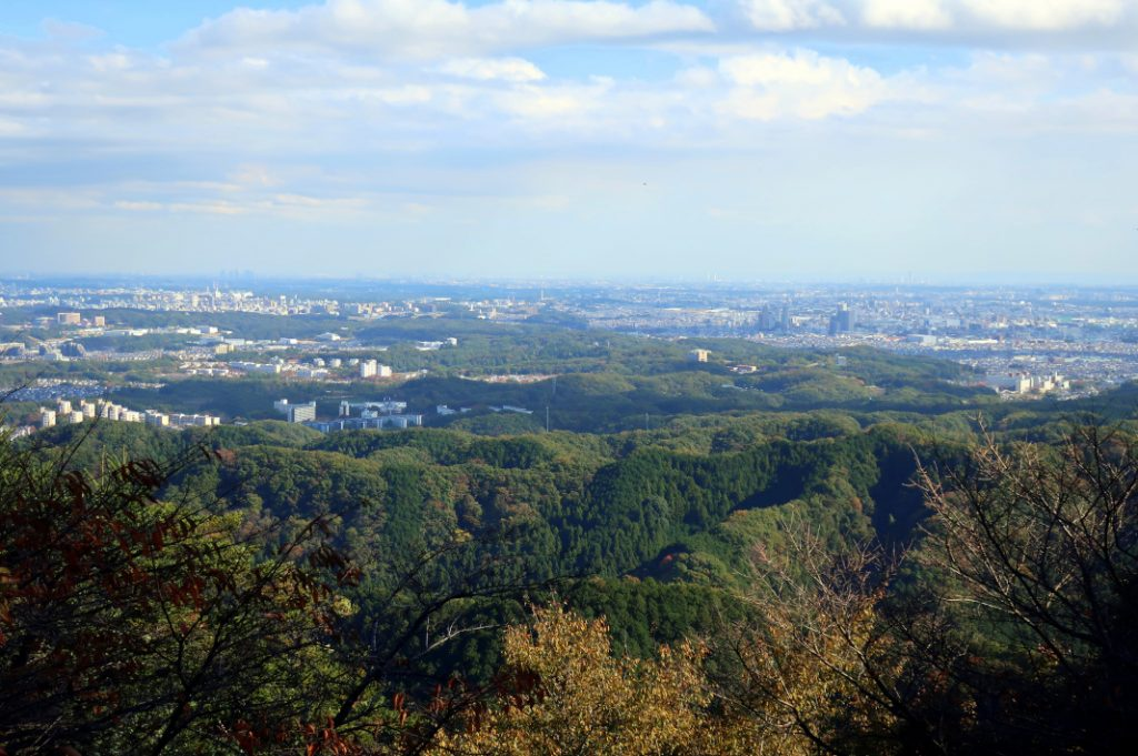 The view from Mount Takao; see if you can spot the monkey park