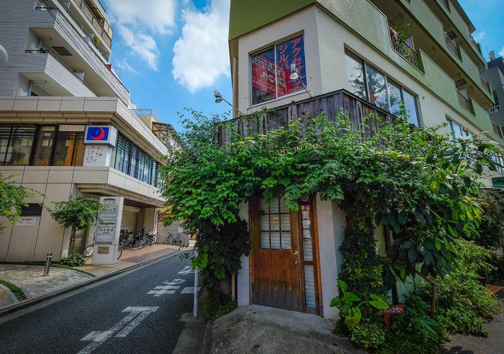 Darwin Room in Shimokitazawa