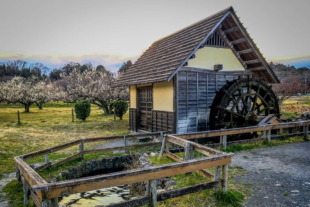 This tranquil waterwheel is in Hidaka's Kinchaku field. The red spider lily festival is held in the area.