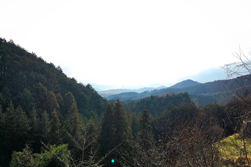 Views of the landscape. The Hidaka area is home to the Red Spider Lily Festival