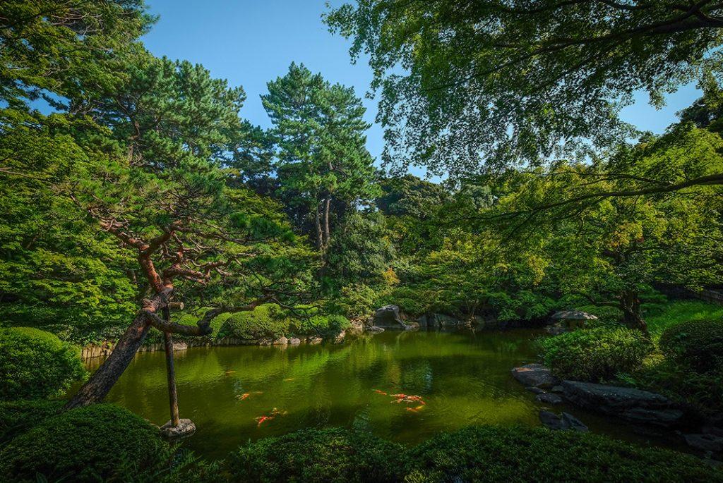 The Japanese Garden at the Teien Art Museum