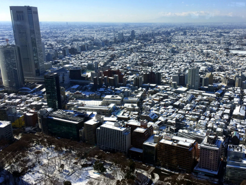Although snow rarely falls on the city, there's a ton of fun winter activities in Tokyo