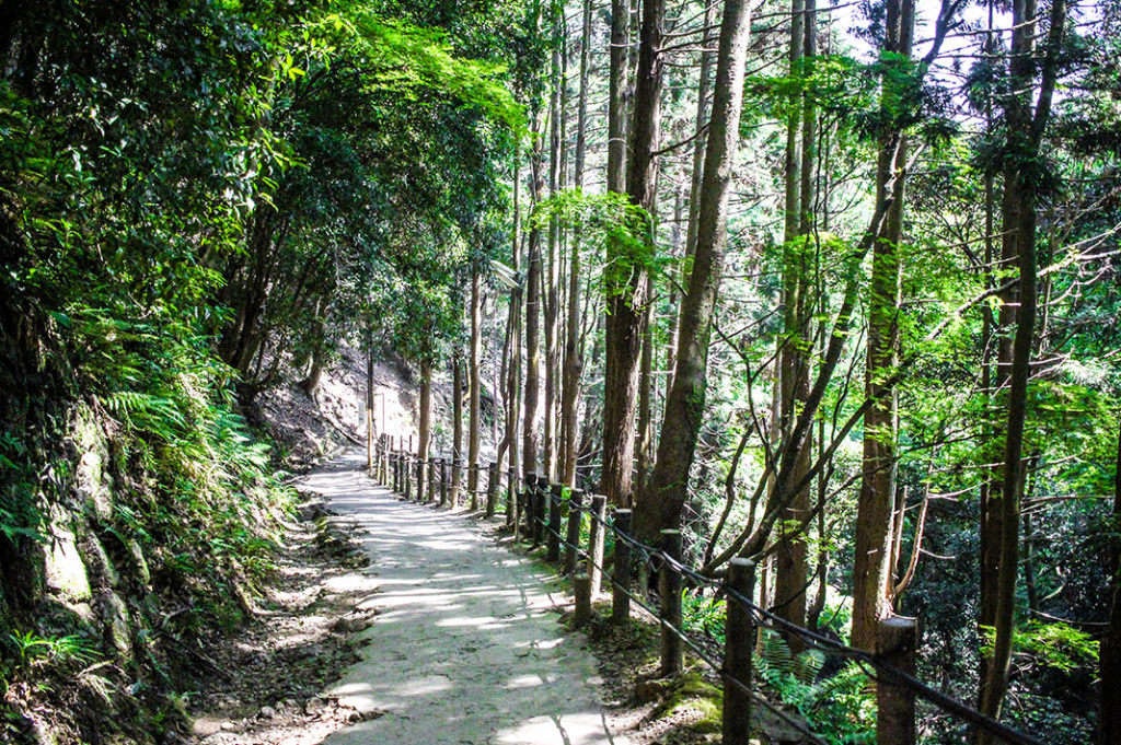 Hiking to Arashiyama Monkey Park