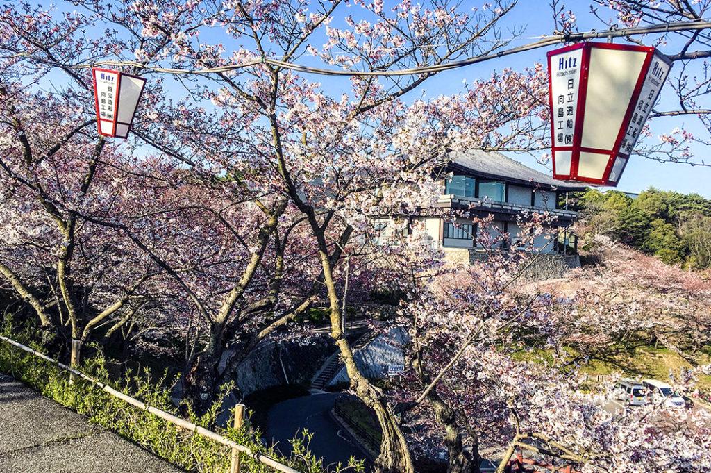 Or take the Literature Path up to Senko-ji