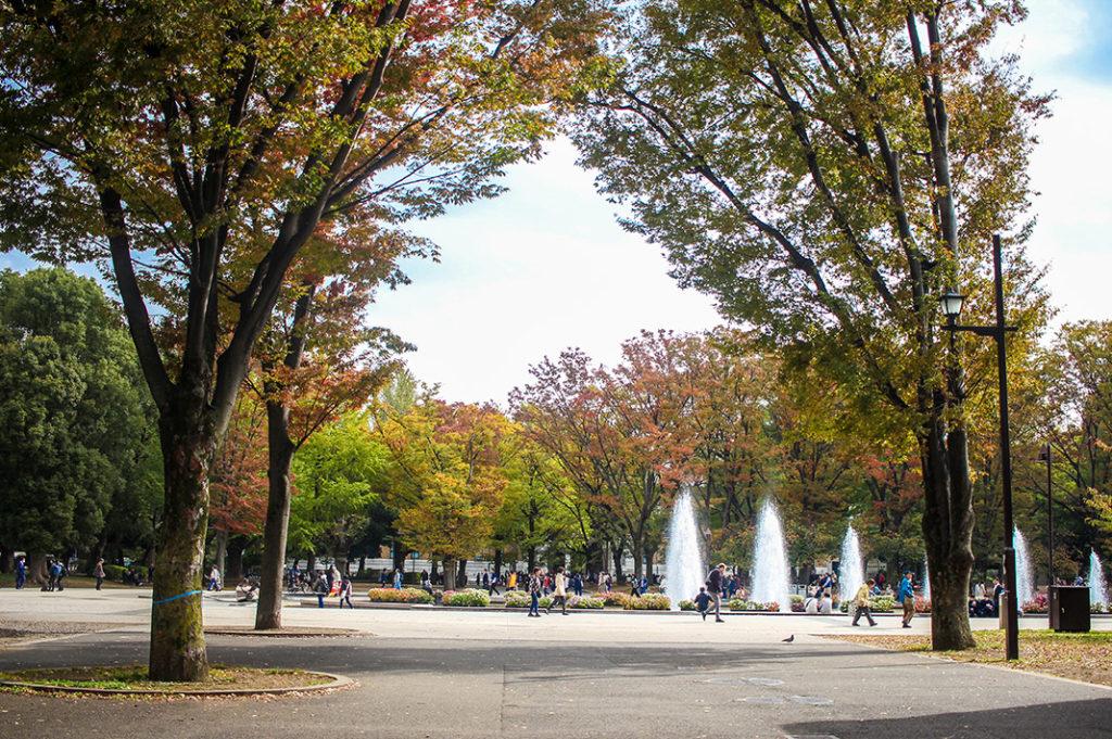 within Ueno park