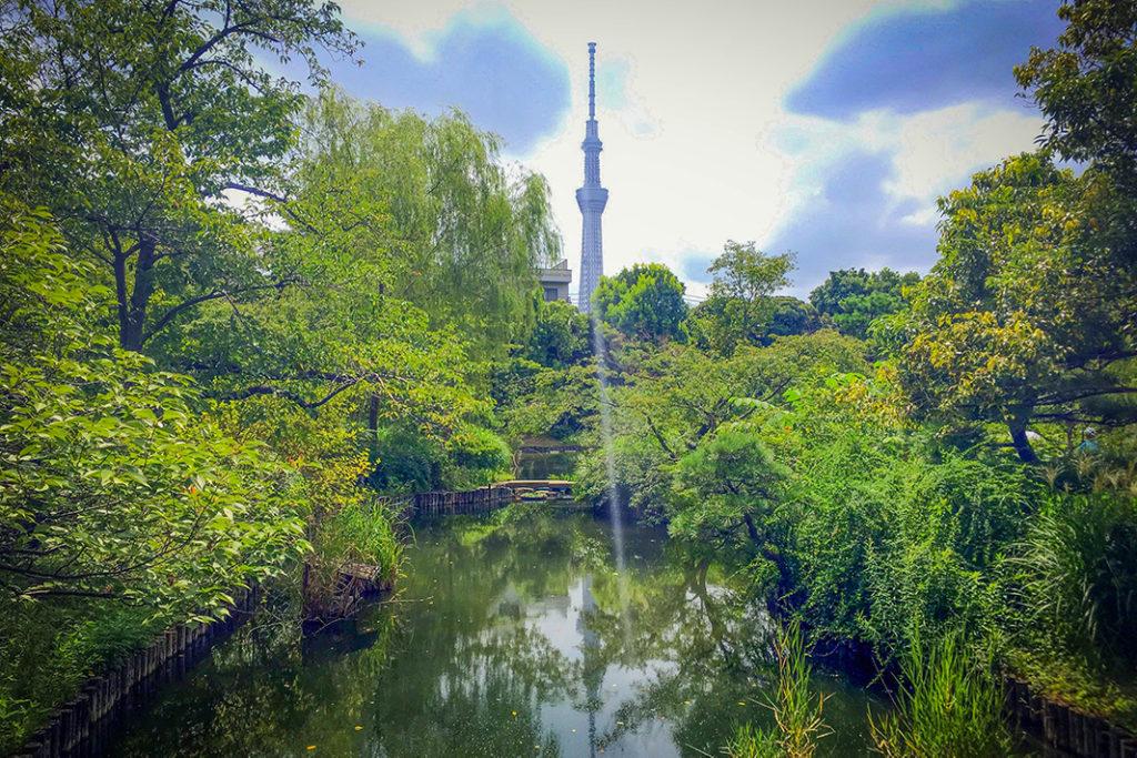 A stellar Tokyo Instagram spot,  Mukojima-Hyakkaen Garden is the perfect balm to Tokyo's bustle