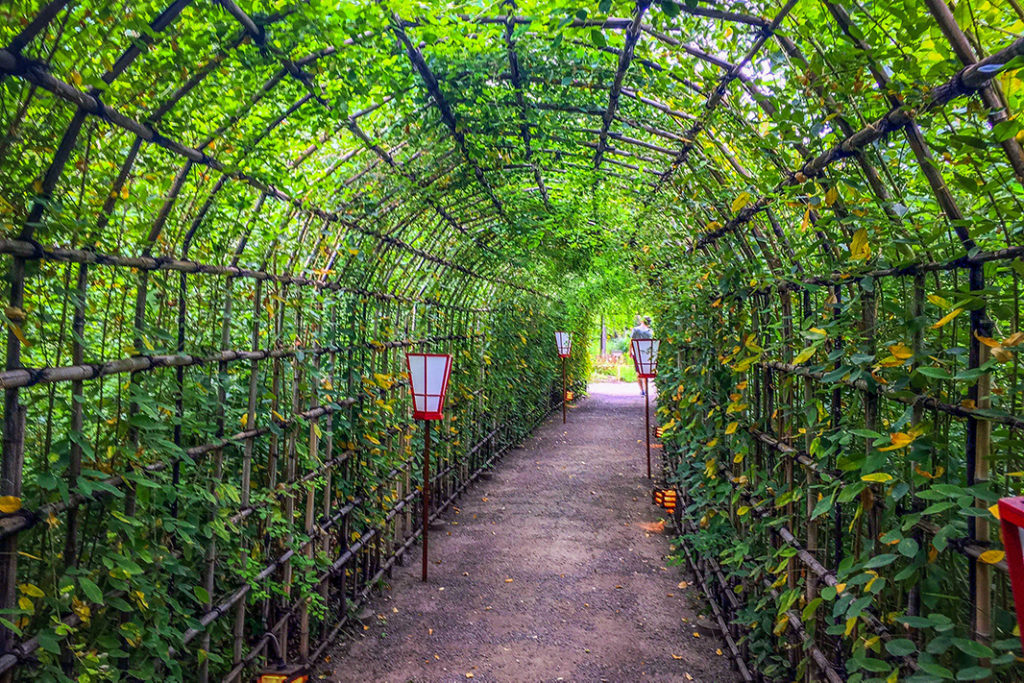 The Japanese clover tunnel feels like stepping into a fairy tale
