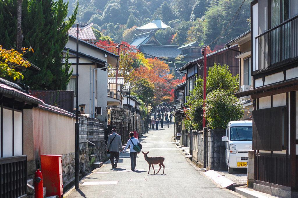 The path to Daisho-in Temple on Miyajima