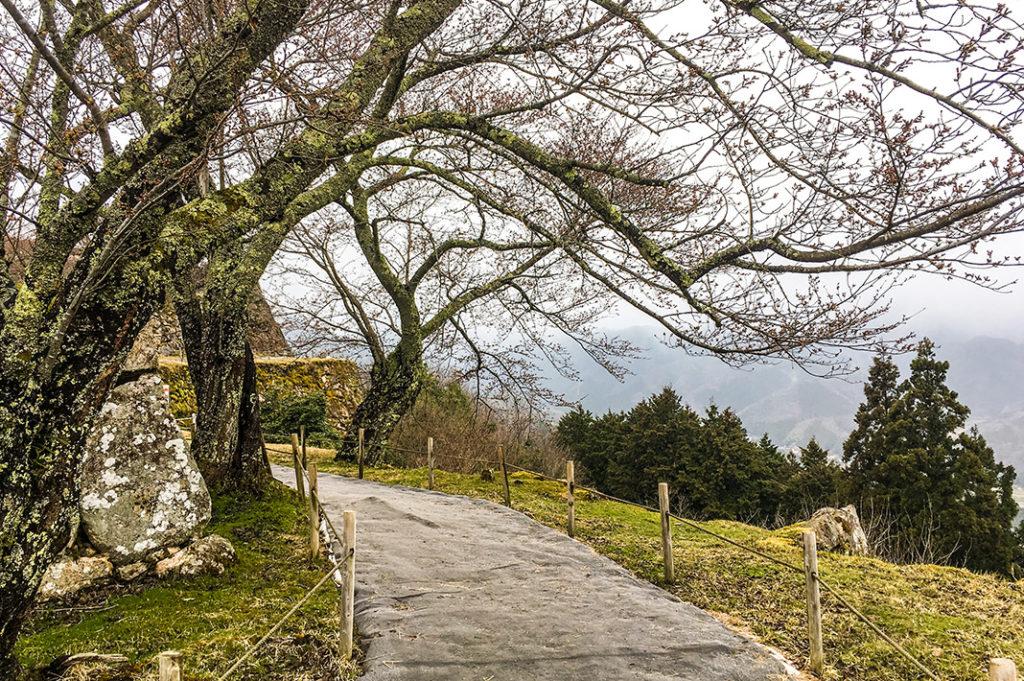 Takeda Castle is a misty, romantic ruin