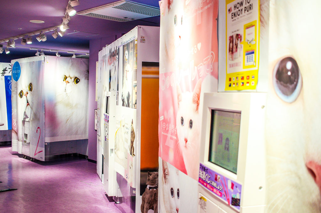 Let your inner teen enjoy these kawaii places in Tokyo