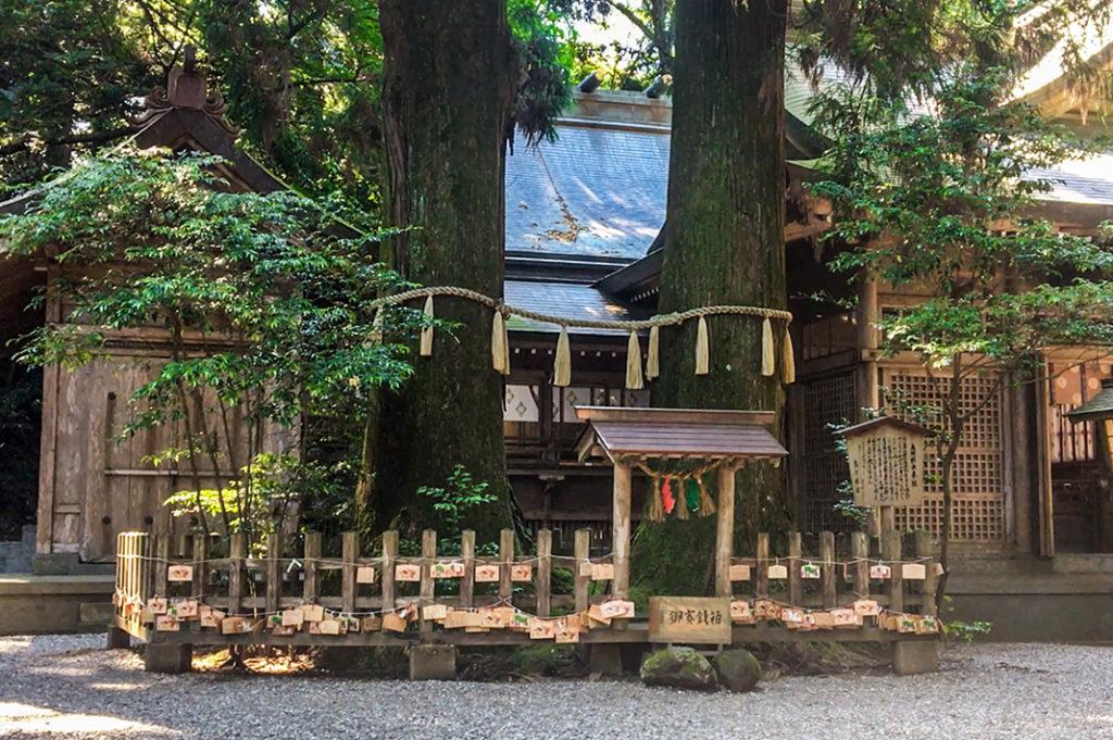 Takachiho Shrine, Kumamoto, Kyushu