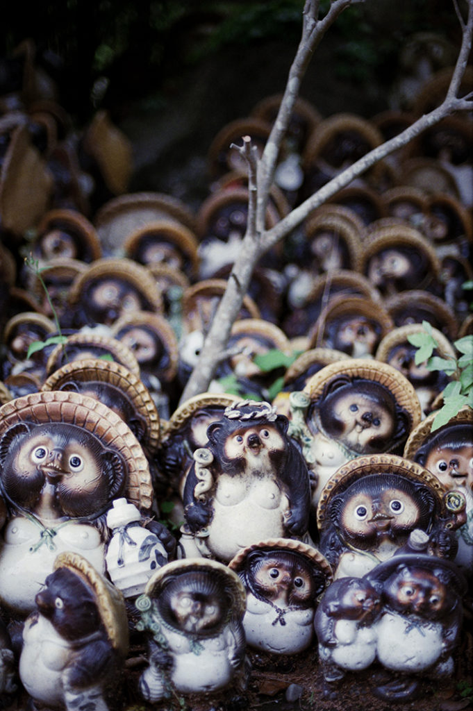 Hundreds of Tanuki statues, which are immensely popular in Japan, have been donated to the shrine.