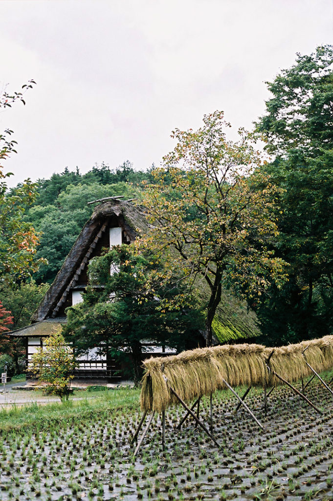 A smaller version of Shirakawa-go, Hida Folk Village is a perfectly preserved slice of rural history in Takayama.