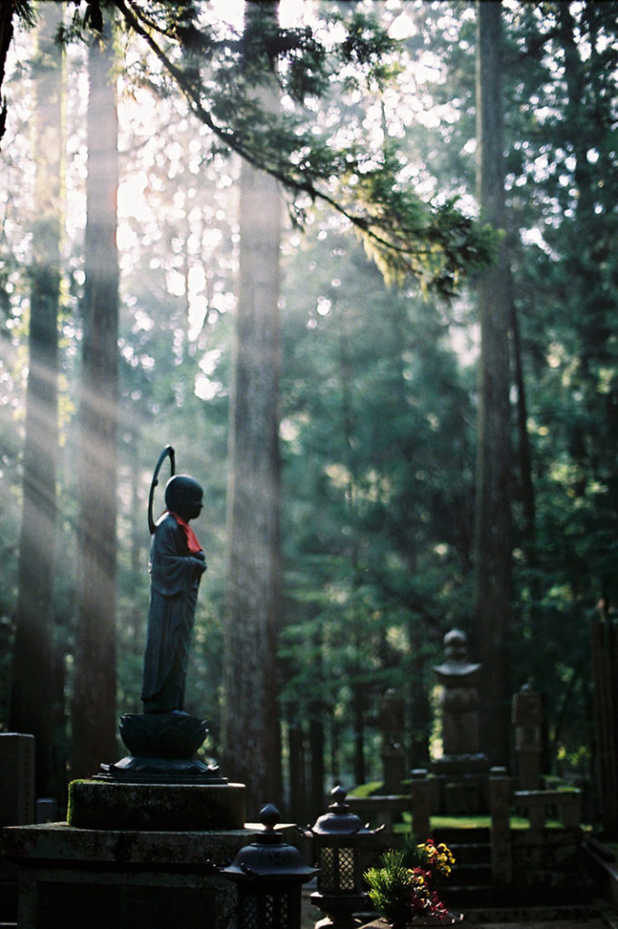 Jizo looks out at the morning light in Okuno-in.