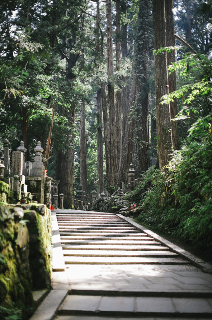 A stone pathway bathed in sunlight ascends through hallways of tall cedar trees in the Okuno-in cemetary in Kōya-san.