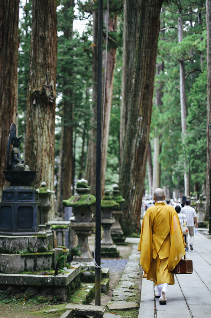 A senior monk in ochre yellow robes walks away from the camera and into a forest of towering cedar trees of Kōya-san.
