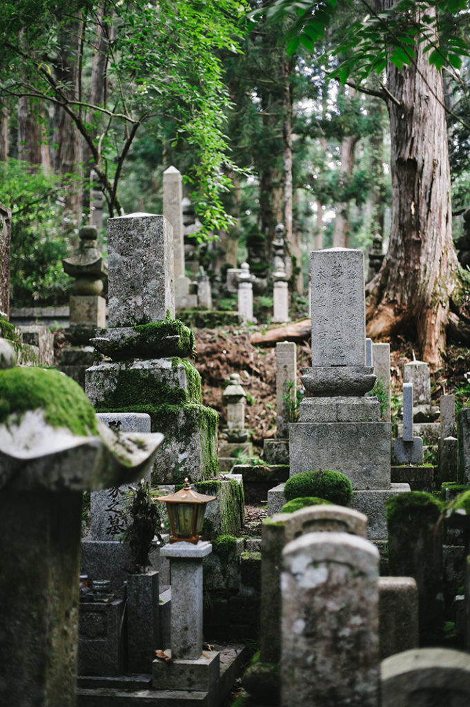 Moss-covered stone monuments fade into a deep green forest in Okuno-in on the mountain of Kōya-san.