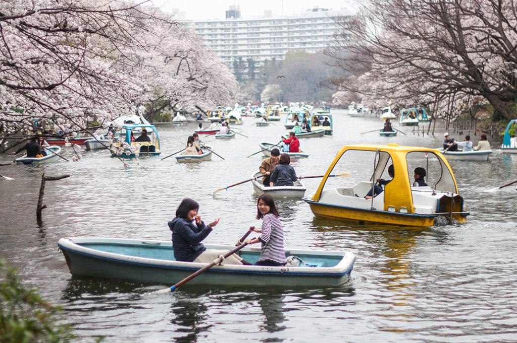 Friends having fun at Inokashira Park