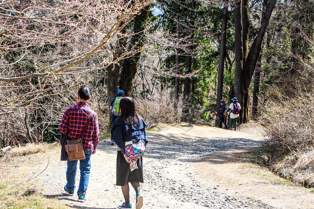 Hiking Mount Hodo
