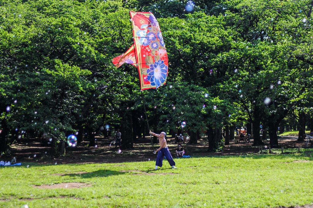 Leisure activities at Yoyogi Park, Tokyo