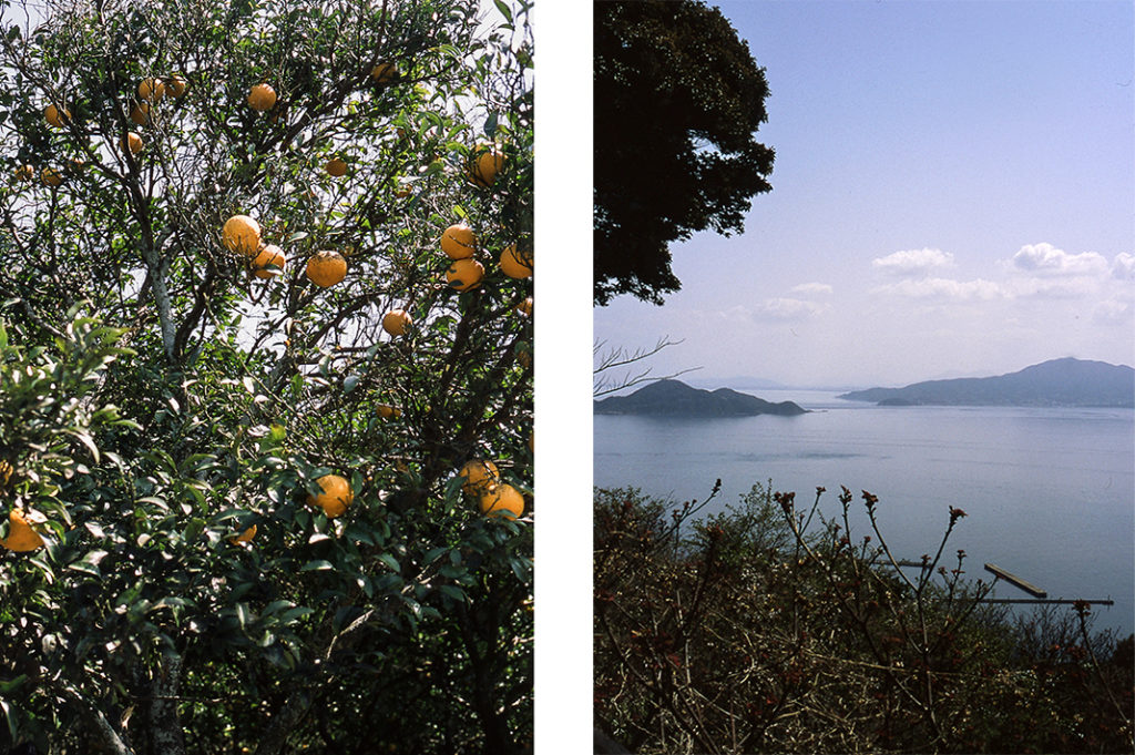More than half of Oshima island is classed as 'hilly' and these hilltops offer stunning views of the surrounding seas and islands.