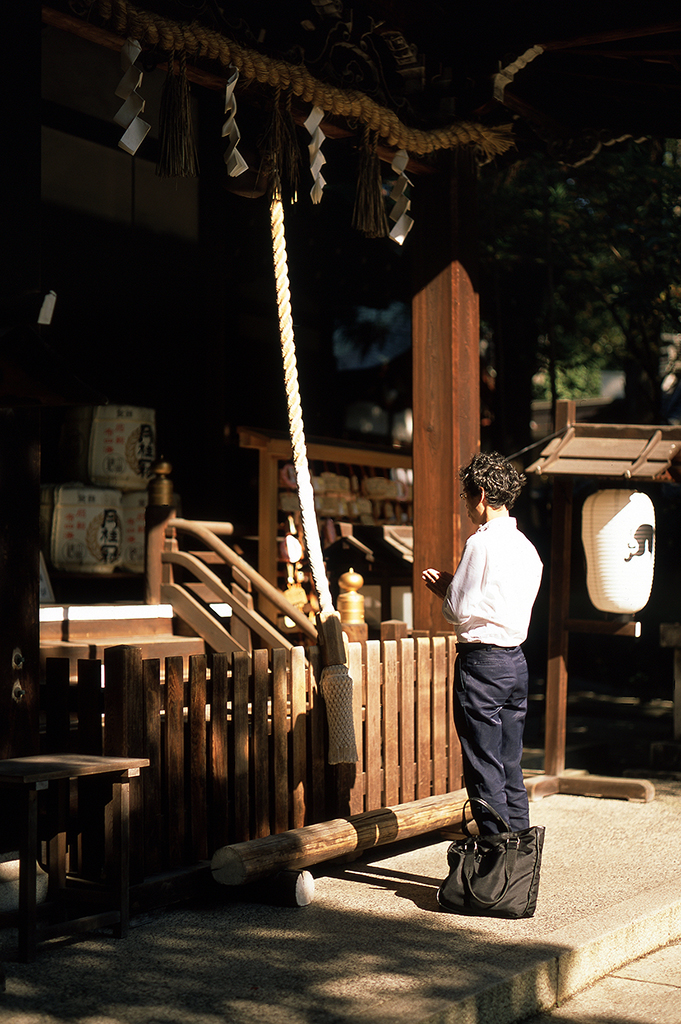 Okazaki's peaceful grounds are bathed in soft sunlight and planted with cherry trees.