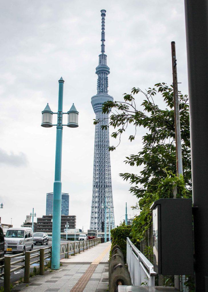 Tokyo Skytree standing tall.