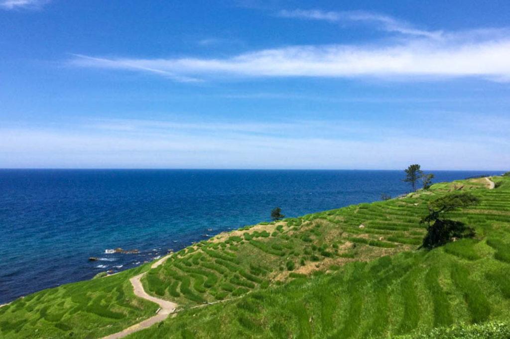 The breathtaking Senmaida rice fields of the Noto Peninsula