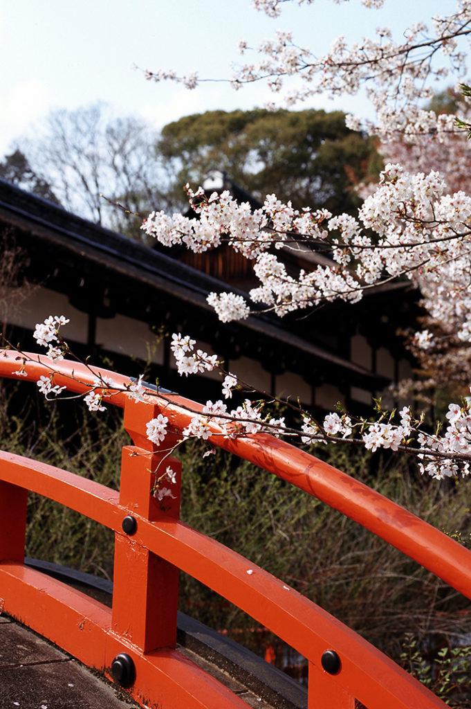 Keywords: Kyoto, Kyoto City, Tour, Walking Tour, Kyoto Walking Tour