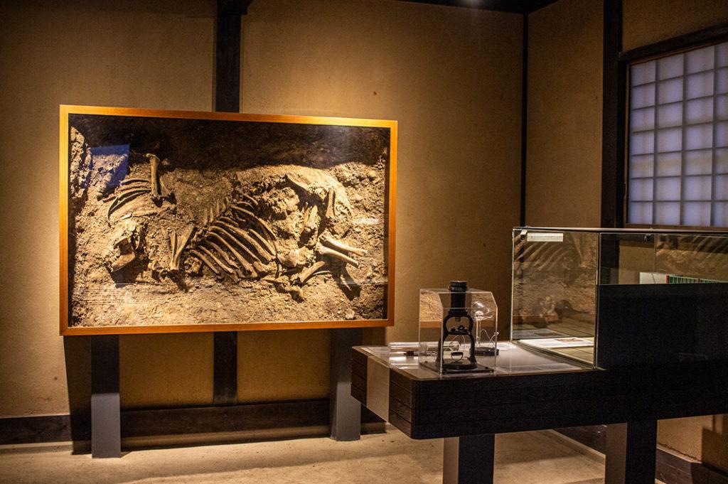 Displays at Dejima, Nagasaki's Dutch Trading Post