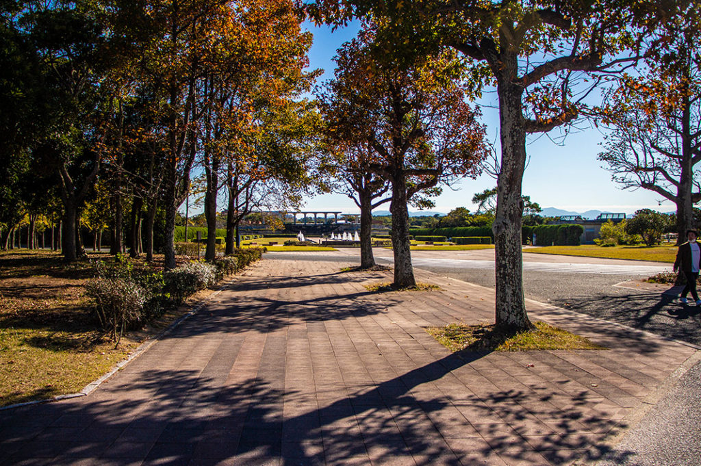 Uminonakamichi Seaside Park is a great family activity in Fukuoka for cycling, golf, playgrounds, a zoo, seasonal flowers and more!