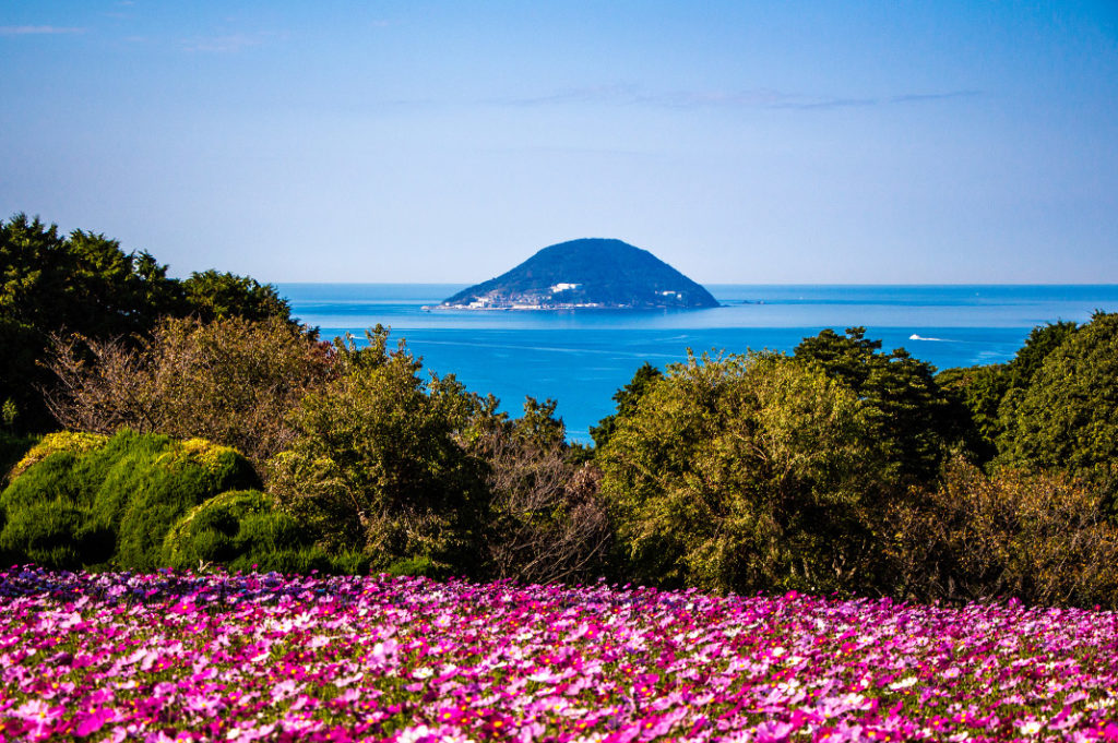 The Nokonoshima Island Park, with sweeping views and hills blanketed in seasonal flowers, it's one of the most charming day trips in Fukuoka.