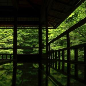 Rurikoin temple Kyoto